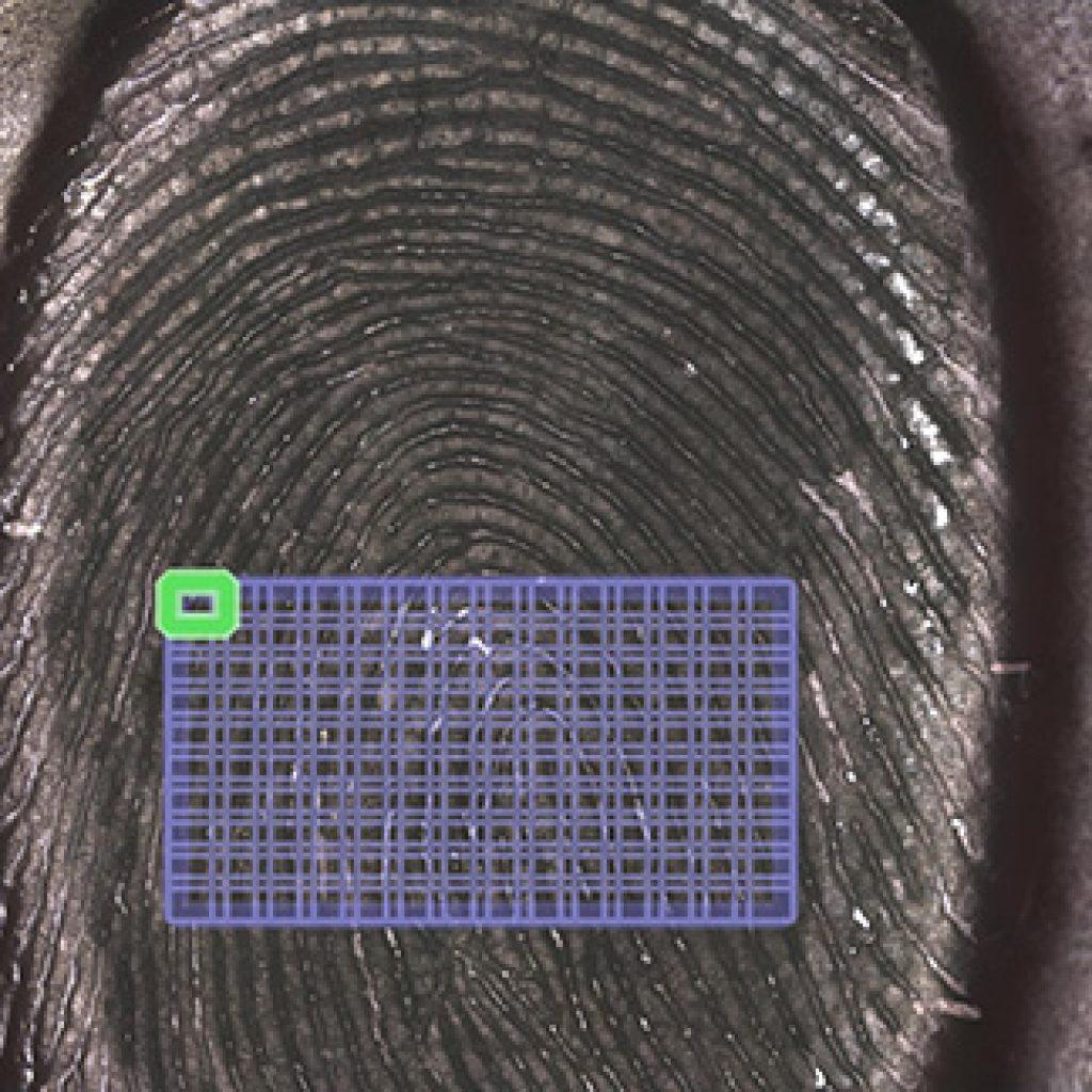 cs_fingerprint1