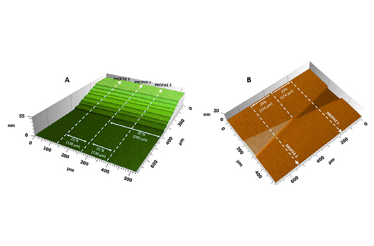 3D label free bio-transfer standards