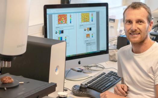 S Neoxが古代絵の表面のトライボロジー研究に貢献