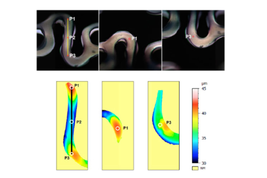 Optical stent inspection of surface texture and coating thickness