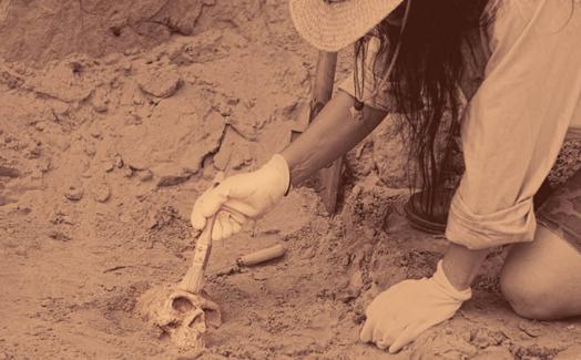 为什么光学轮廓仪对古生物学和考古发现至关重要? – 会视频
